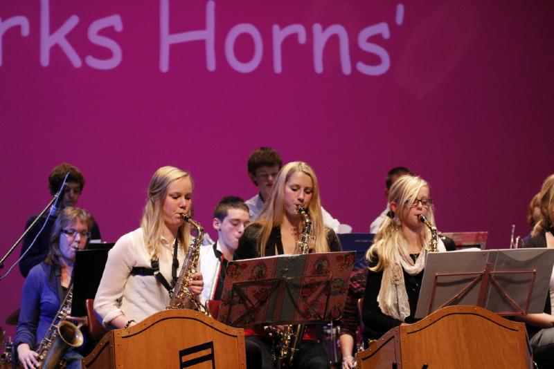 Dirk\'s Horns